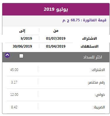 فاتورة التليفون الأرضي يوليو 2019